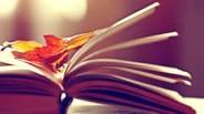 livre et feuilles automnes